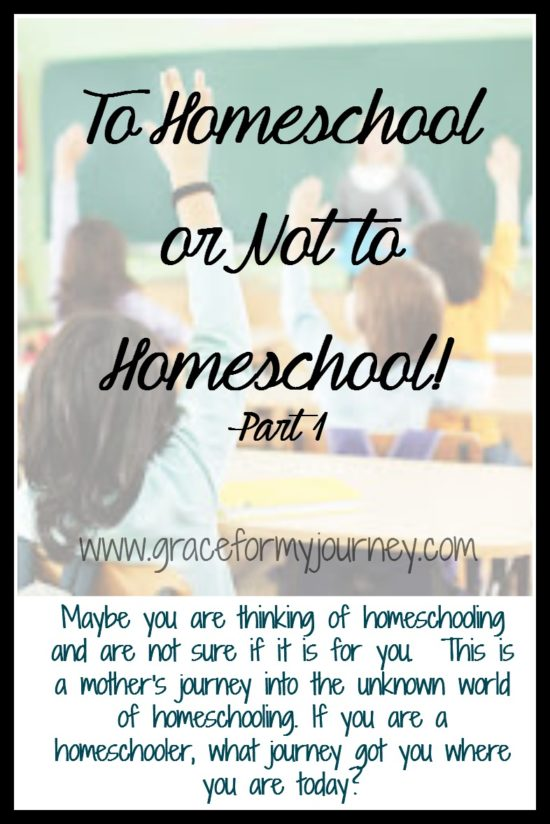 To Homeschool or Not to Homeschool! | part 1 | homeschool | children | school | bullying | parenting |