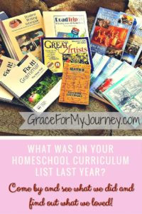 What was on your homeschool curriculum list last year?